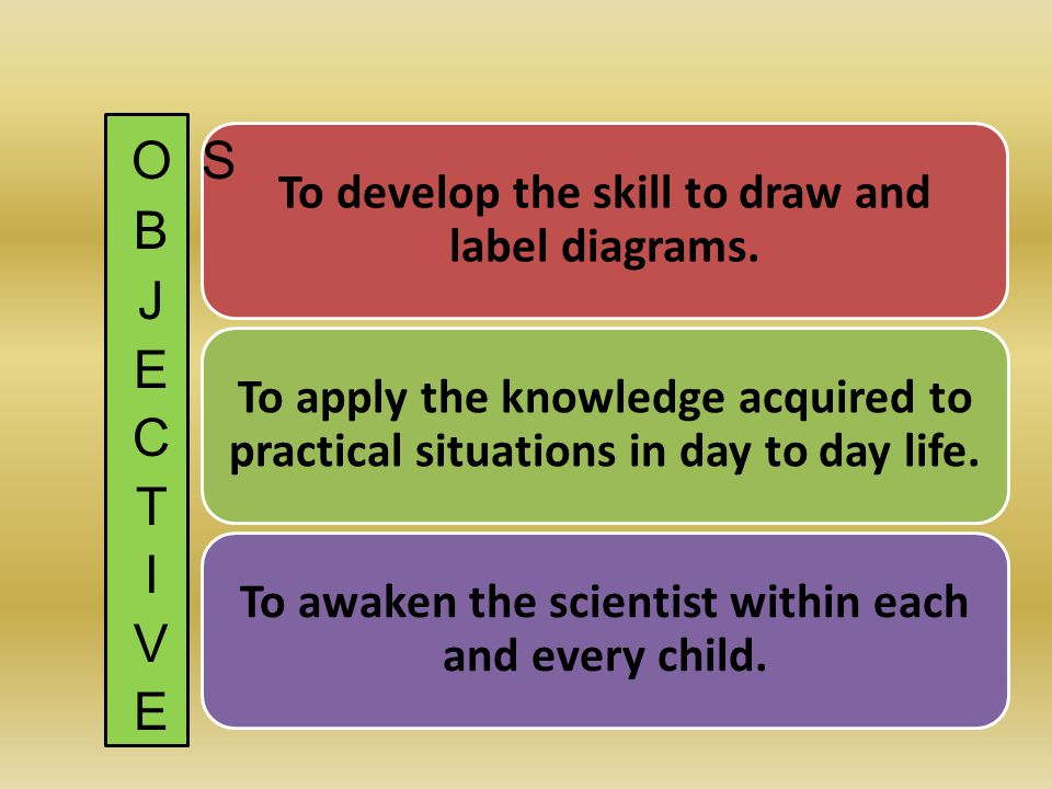 To develop the skill to draw and label diagrams. To apply the knowledge acquired to practical situations in day to day life. To awaken the scientist w