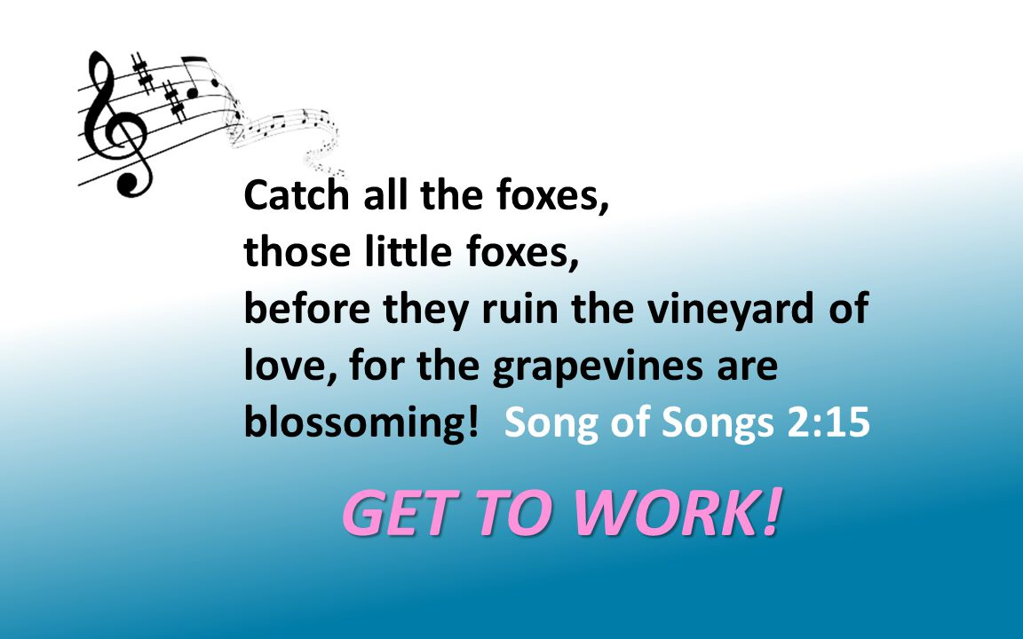 Catch all the foxes, those little foxes, before they ruin the vineyard of love, for the grapevines are blossoming! Song of Songs 2:15 GET TO WORK!