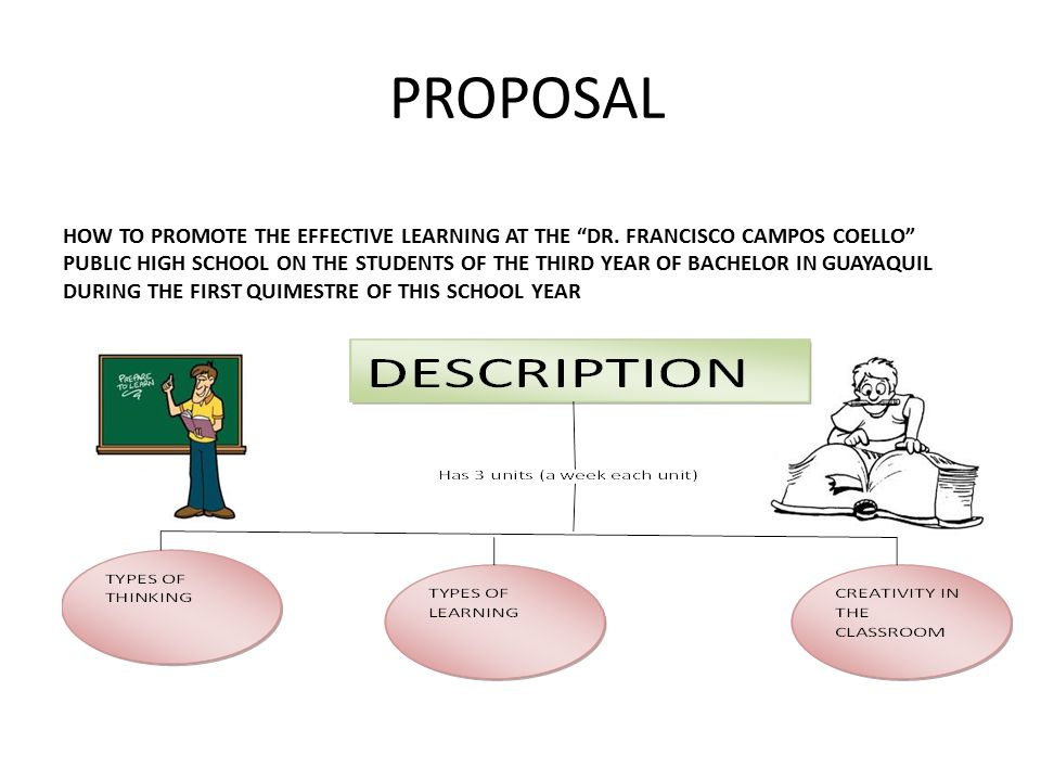 PROPOSAL HOW TO PROMOTE THE EFFECTIVE LEARNING AT THE DR.