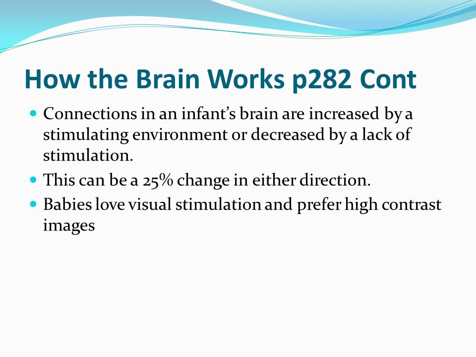How the Brain Works p282 Cont Connections in an infant's brain are increased by a stimulating environment or decreased by a lack of stimulation. This