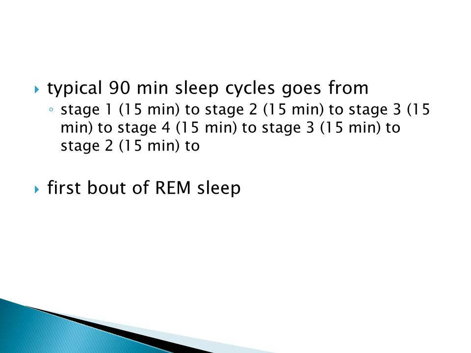  typical 90 min sleep cycles goes from ◦ stage 1 (15 min) to stage 2 (15 min) to stage 3 (15 min) to stage 4 (15 min) to stage 3 (15 min) to stage 2 (15 min) to  first bout of REM sleep
