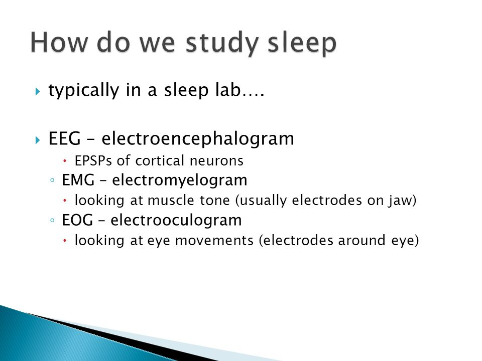  typically in a sleep lab….  EEG – electroencephalogram  EPSPs of cortical neurons ◦ EMG – electromyelogram  looking at muscle tone (usually elect