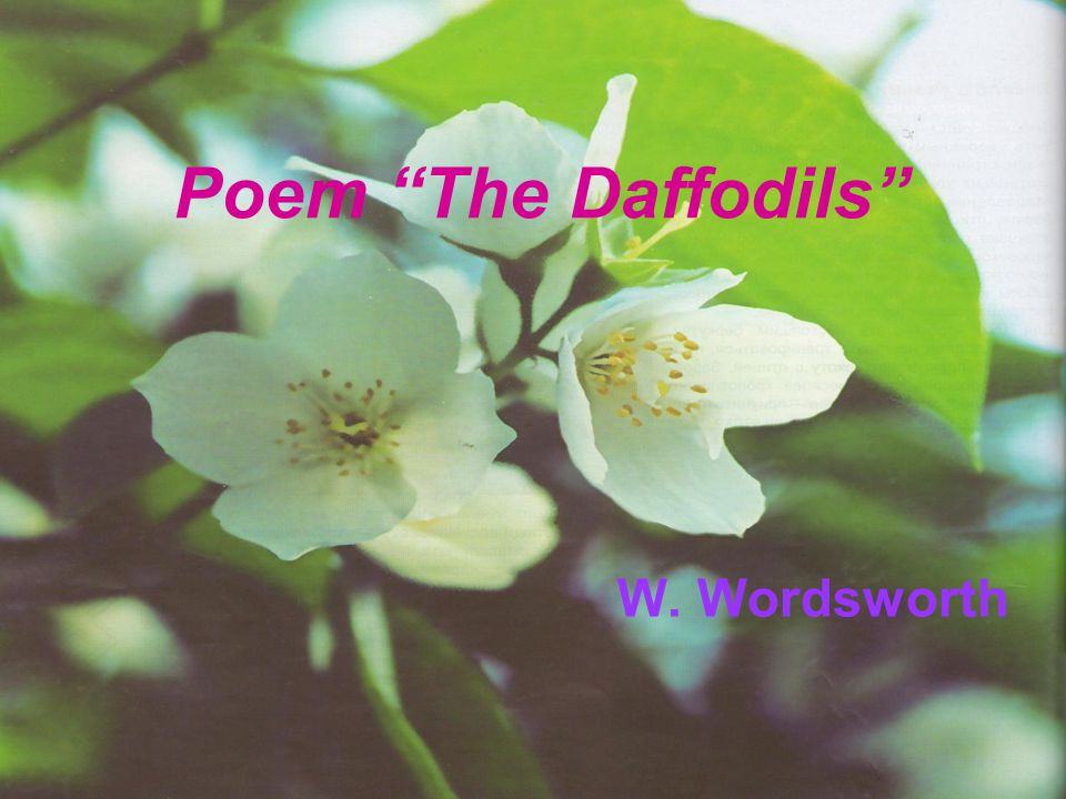 Poem The Daffodils W. Wordsworth