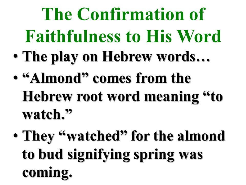 The Confirmation of Faithfulness to His Word The play on Hebrew words… The play on Hebrew words… Almond comes from the Hebrew root word meaning to watch. Almond comes from the Hebrew root word meaning to watch. They watched for the almond to bud signifying spring was coming.