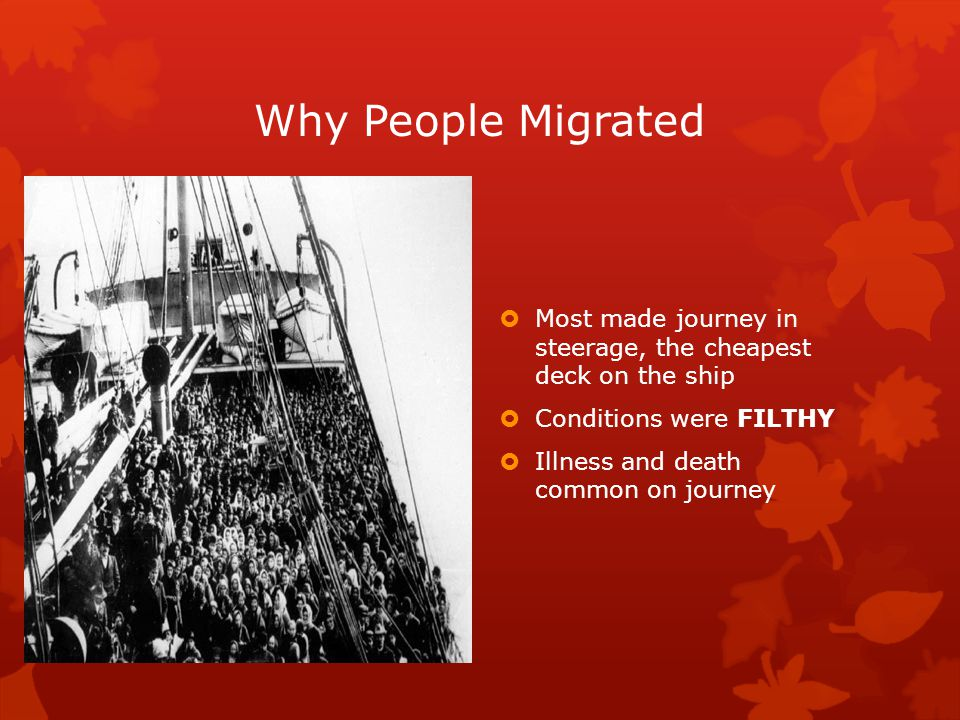 Why People Migrated  Most made journey in steerage, the cheapest deck on the ship  Conditions were FILTHY  Illness and death common on journey