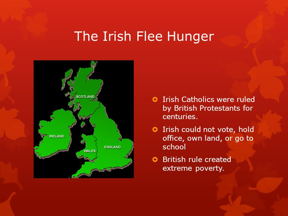 The Irish Flee Hunger  Irish Catholics were ruled by British Protestants for centuries.
