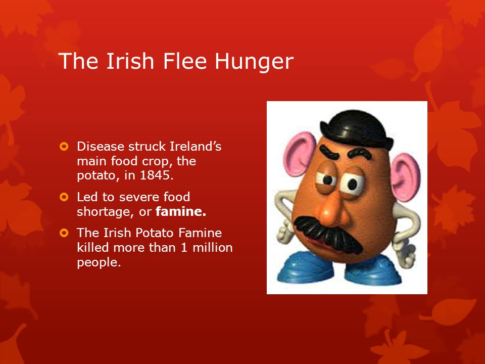 The Irish Flee Hunger  Disease struck Ireland's main food crop, the potato, in 1845.