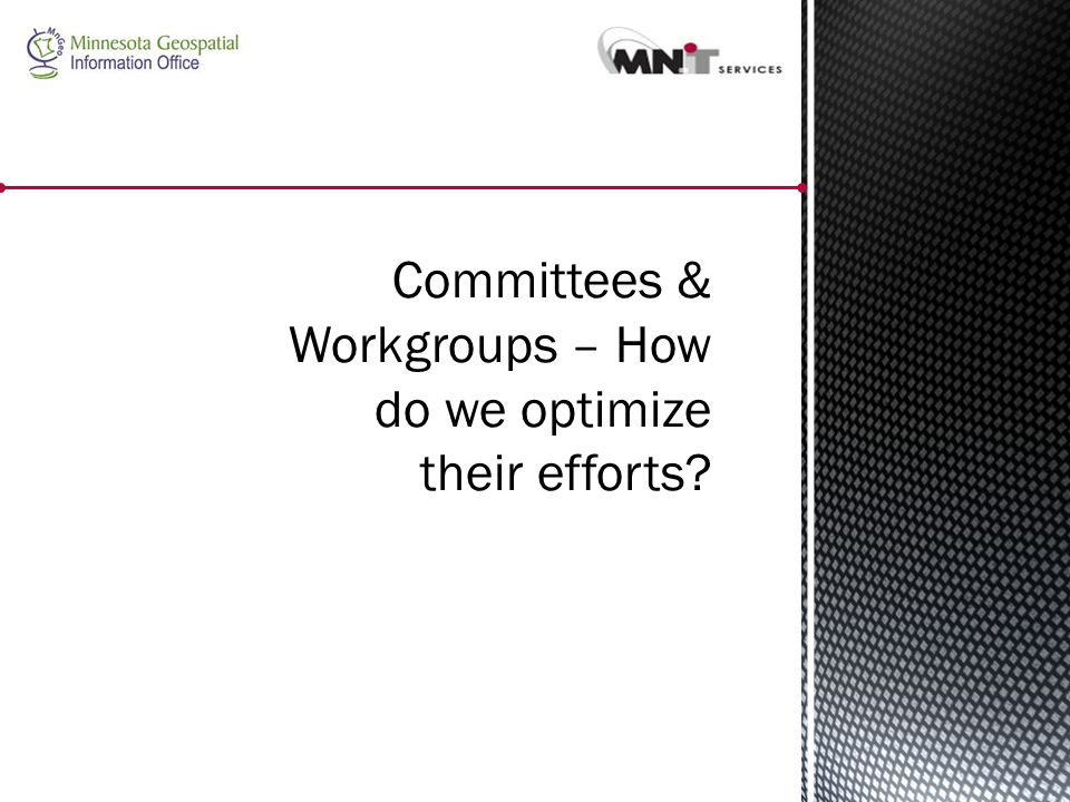 Committees & Workgroups – How do we optimize their efforts?