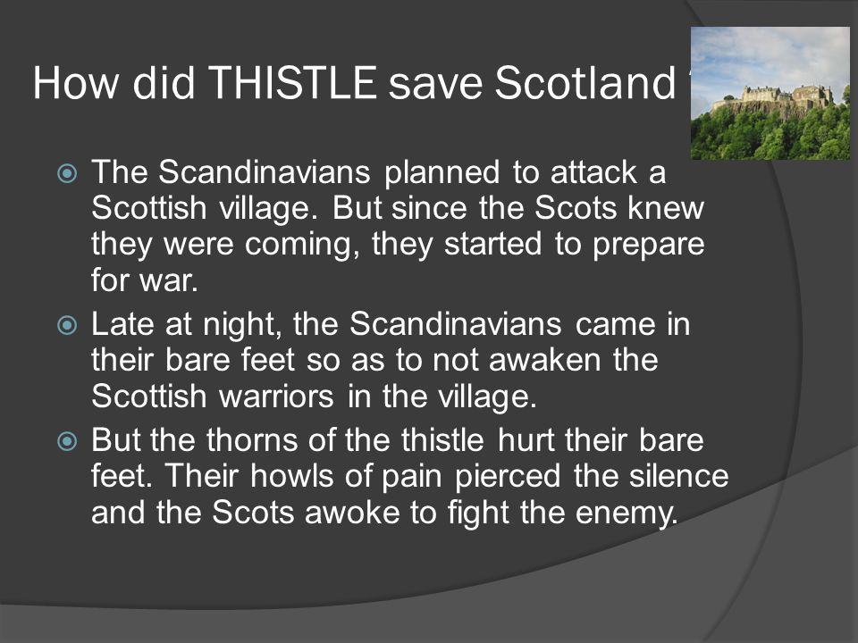 How did THISTLE save Scotland .  The Scandinavians planned to attack a Scottish village.