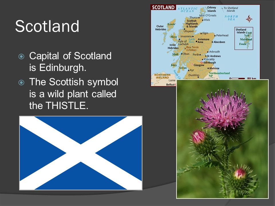 Scotland  Capital of Scotland is Edinburgh.