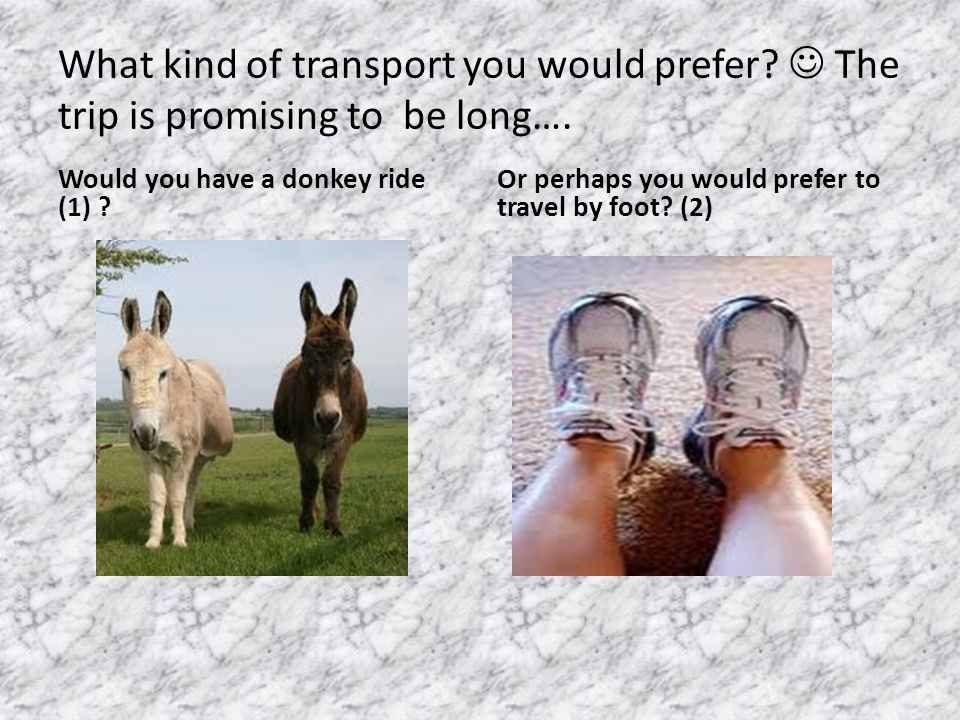 What kind of transport you would prefer. The trip is promising to be long….