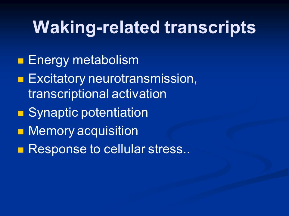 Waking-related transcripts Energy metabolism Excitatory neurotransmission, transcriptional activation Synaptic potentiation Memory acquisition Response to cellular stress..