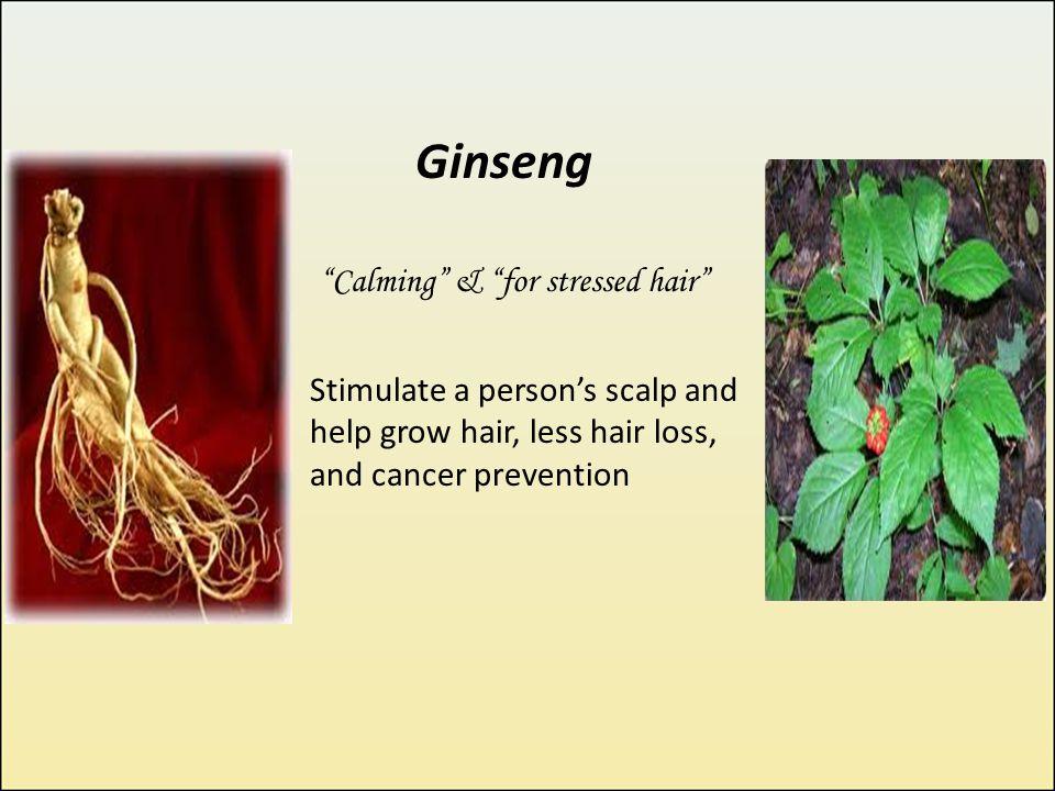 Green Apple Shampoo Green Apple Extract Lemon Extract Amla Extract Bhringraj Contents: