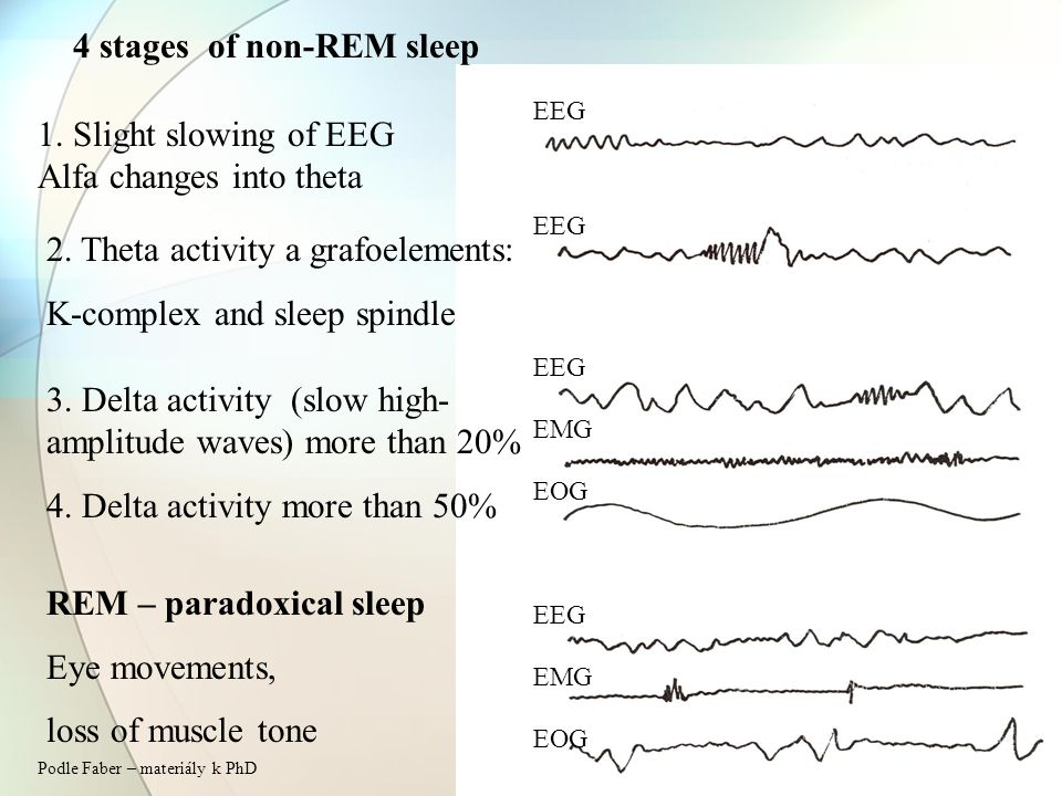 4 stages of non-REM sleep 1. Slight slowing of EEG Alfa changes into theta 2.