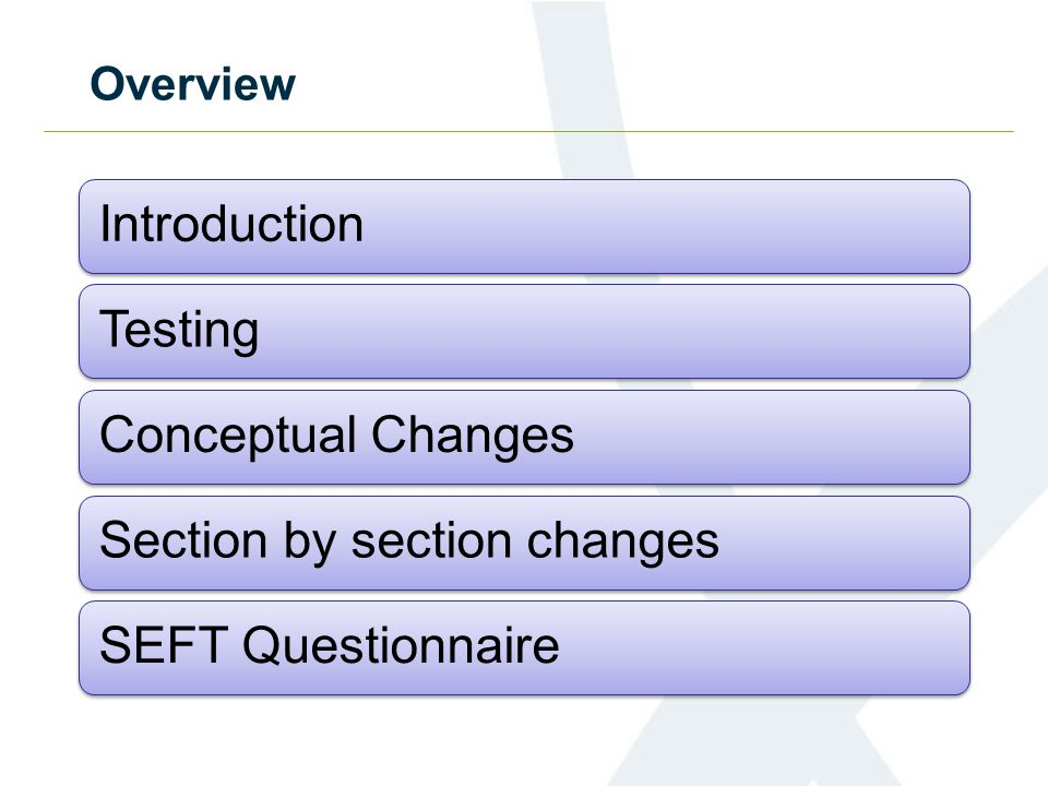 Overview IntroductionTestingConceptual ChangesSection by section changesSEFT Questionnaire