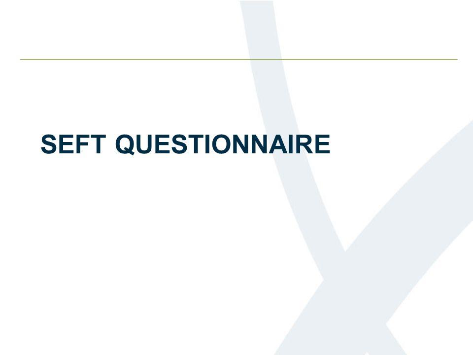 SEFT QUESTIONNAIRE