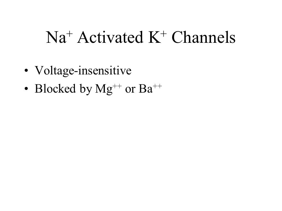 Na + Activated K + Channels Voltage-insensitive Blocked by Mg ++ or Ba ++