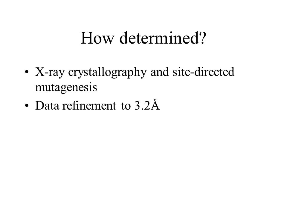 How determined? X-ray crystallography and site-directed mutagenesis Data refinement to 3.2Å