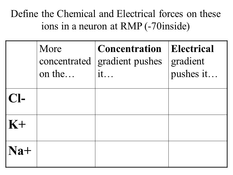 More concentrated on the… Concentration gradient pushes it… Electrical gradient pushes it… Cl-OutsideINOUT K+InsideOUTIN Na+OutsideIN Define the Chemical and Electrical forces on these ions in a neuron at RMP (-70inside)