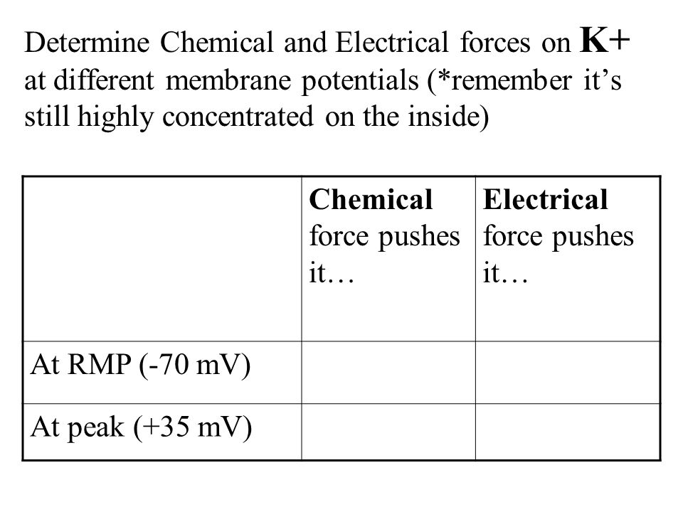 Determine Chemical and Electrical forces on K+ at different membrane potentials (*remember it's still highly concentrated on the inside) Chemical force pushes it… Electrical force pushes it… At RMP (-70 mV)OUTIN At peak (+35 mV)OUT