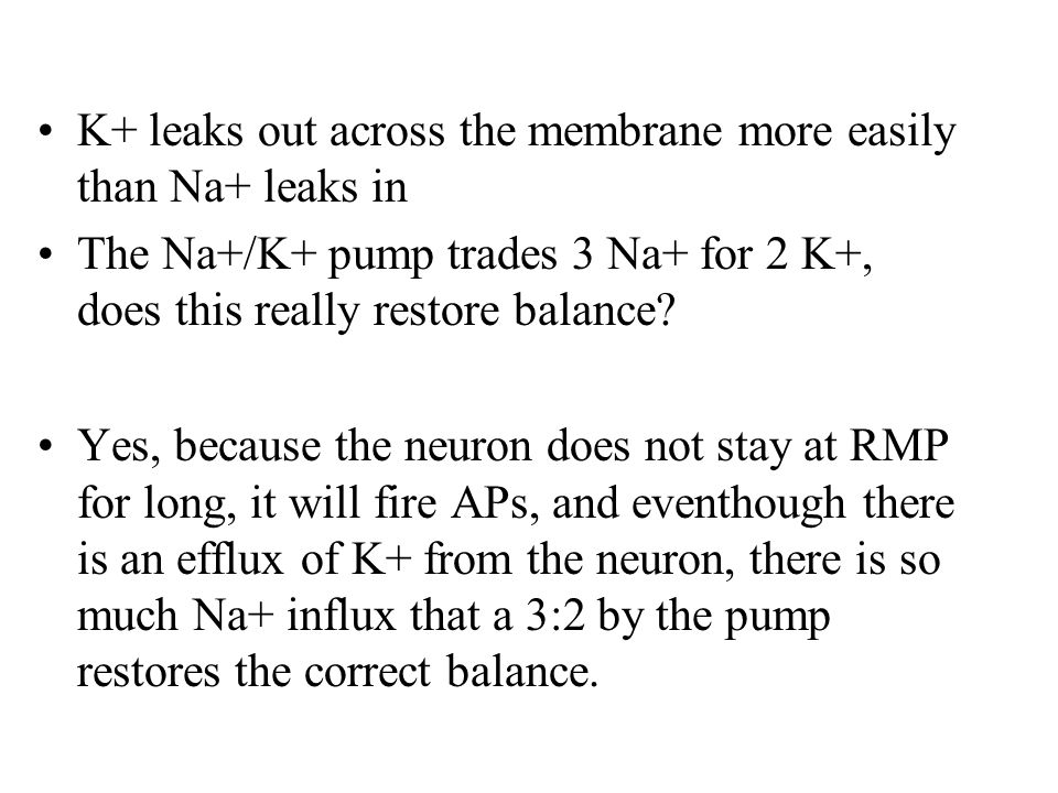 K+ leaks out across the membrane more easily than Na+ leaks in The Na+/K+ pump trades 3 Na+ for 2 K+, does this really restore balance.