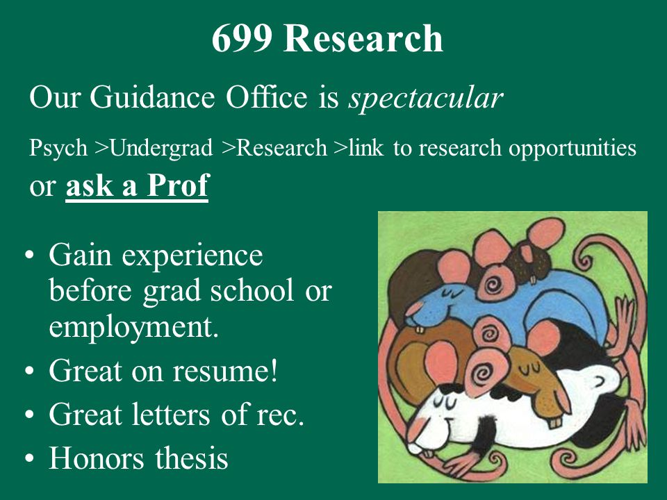 699 Research Gain experience before grad school or employment.