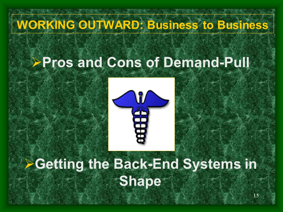 15 WORKING OUTWARD: Business to Business  Pros and Cons of Demand-Pull  Getting the Back-End Systems in Shape