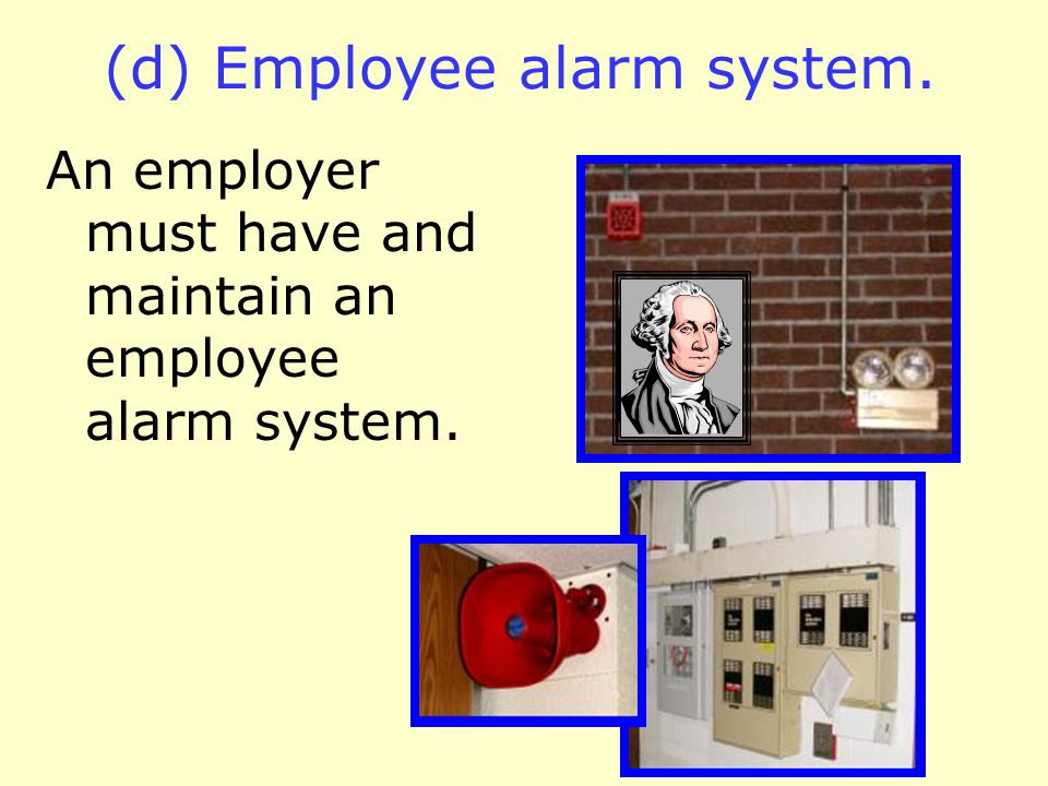 (c) Minimum elements of an emergency action plan. (6) The name or job title of every employee who may be contacted by employees who need more informat