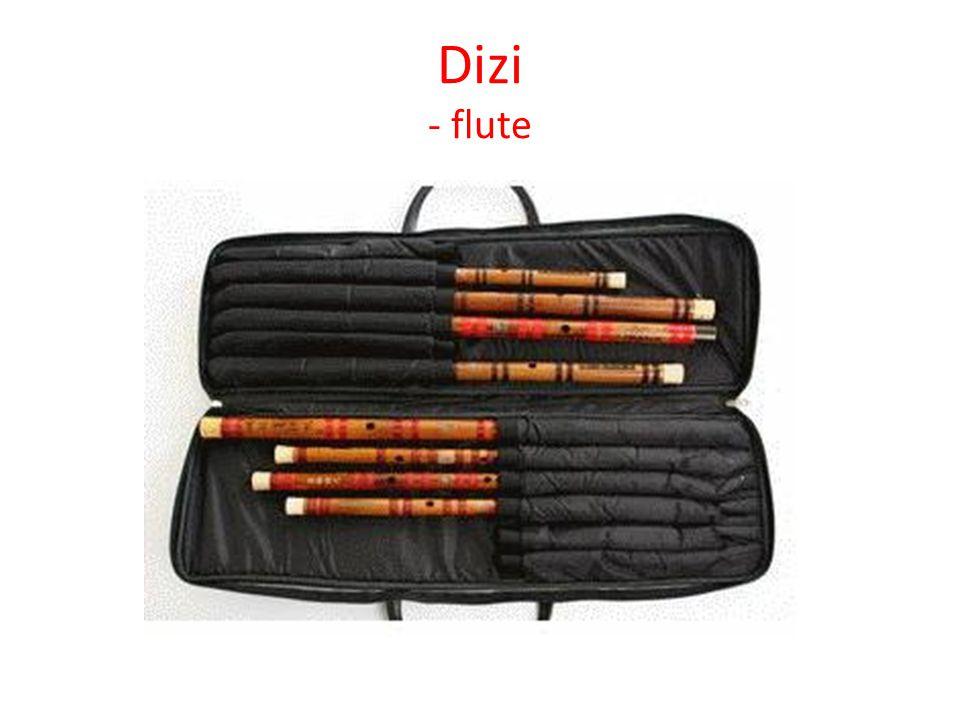 Dizi - flute