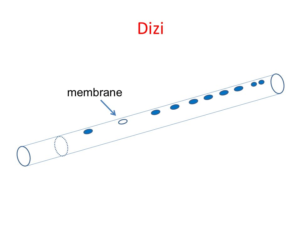 Dizi History Flute: Likely the oldest musical instrument of human kind Varieties include qudi ( 曲笛 ): more mellow and lyrical sound 曲笛 bangdi ( 梆笛 ): more bright and vigorous sound 梆笛 The first written record of the membrane (dimo) dates from the 12th century.