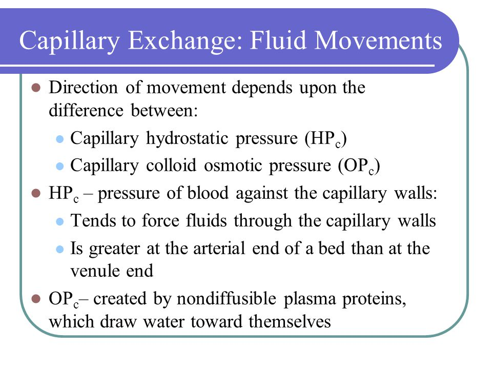 Capillary Exchange: Fluid Movements Direction of movement depends upon the difference between: Capillary hydrostatic pressure (HP c ) Capillary colloid osmotic pressure (OP c ) HP c – pressure of blood against the capillary walls: Tends to force fluids through the capillary walls Is greater at the arterial end of a bed than at the venule end OP c – created by nondiffusible plasma proteins, which draw water toward themselves