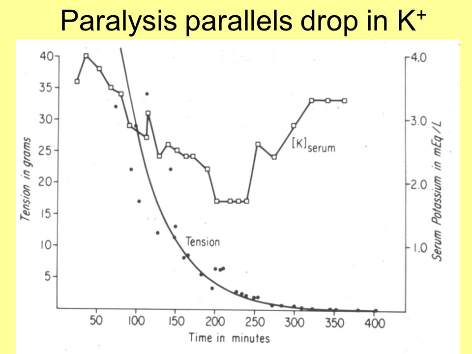 Paralysis parallels drop in K +