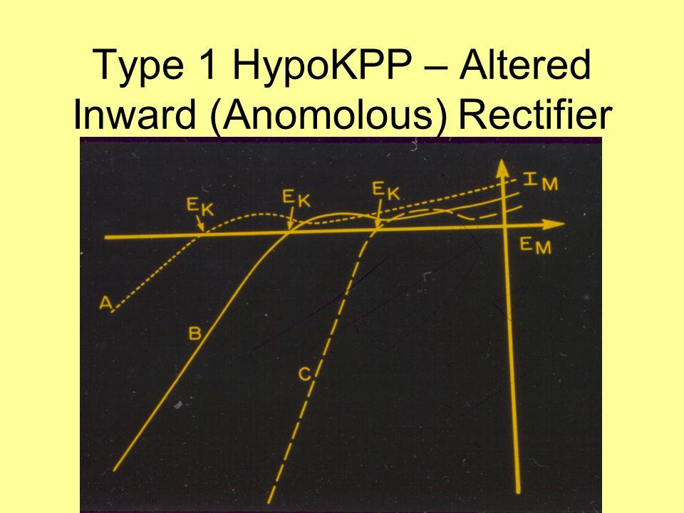 Type 1 HypoKPP – Altered Inward (Anomolous) Rectifier
