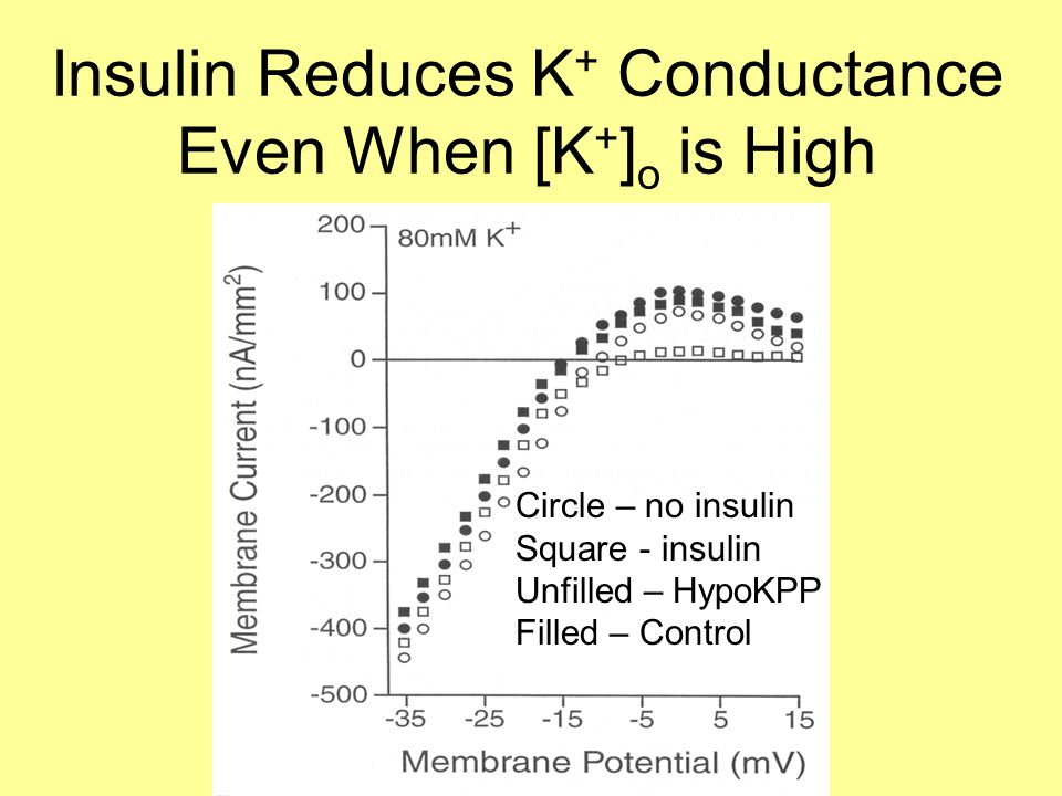 Insulin Reduces K + Conductance Even When [K + ] o is High Circle – no insulin Square - insulin Unfilled – HypoKPP Filled – Control
