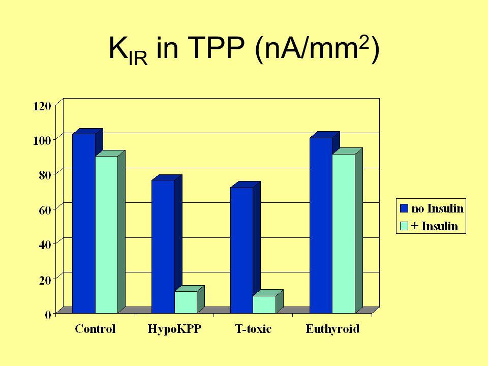 K IR in TPP (nA/mm 2 )