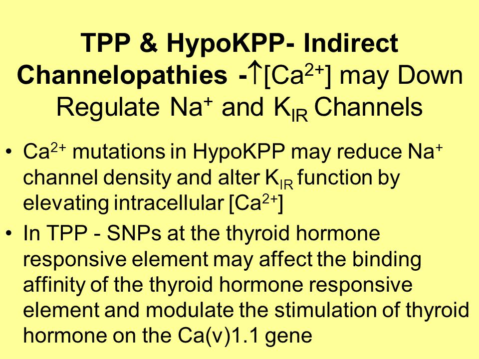 TPP & HypoKPP- Indirect Channelopathies -  [Ca 2+ ] may Down Regulate Na + and K IR Channels Ca 2+ mutations in HypoKPP may reduce Na + channel density and alter K IR function by elevating intracellular [Ca 2+ ] In TPP - SNPs at the thyroid hormone responsive element may affect the binding affinity of the thyroid hormone responsive element and modulate the stimulation of thyroid hormone on the Ca(v)1.1 gene