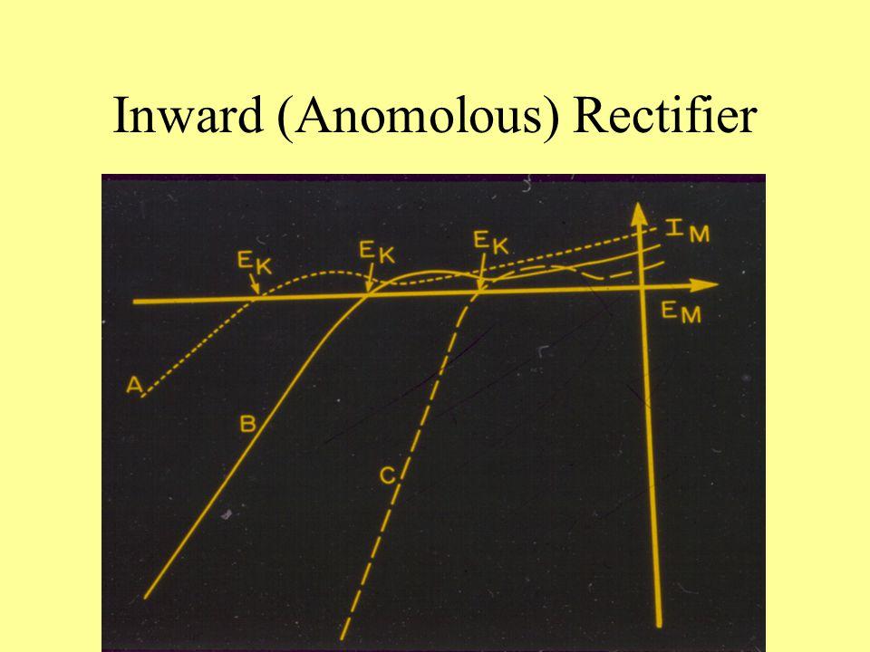 Inward (Anomolous) Rectifier