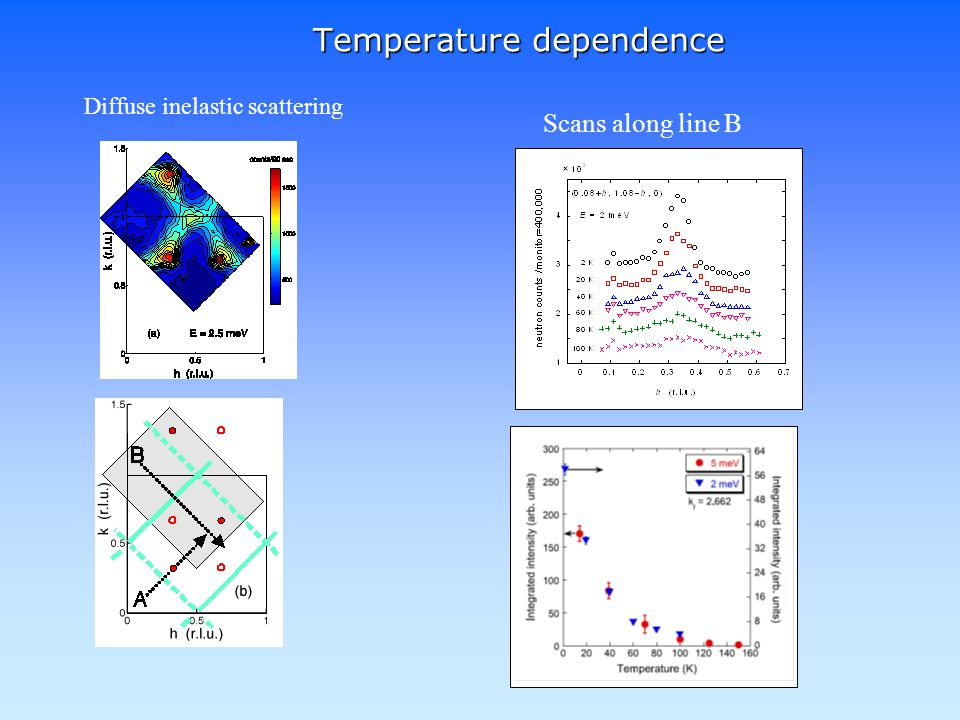 Scans along line B Temperature dependence Diffuse inelastic scattering