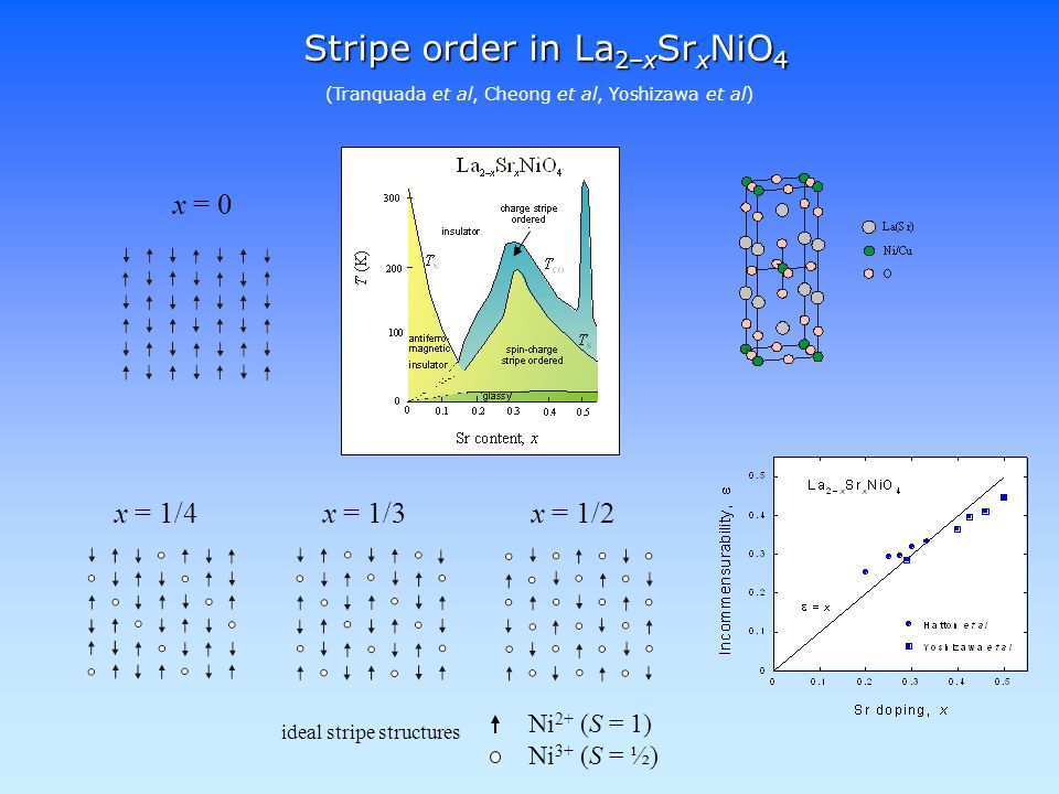 Stripe order in La 2–x Sr x NiO 4 x = 0 x = 1/4x = 1/3x = 1/2 (Tranquada et al, Cheong et al, Yoshizawa et al) ideal stripe structures Ni 2+ (S = 1) Ni 3+ (S = ½)