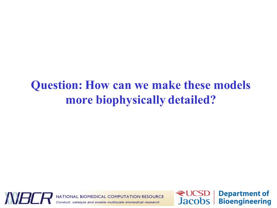 Question: How can we make these models more biophysically detailed?