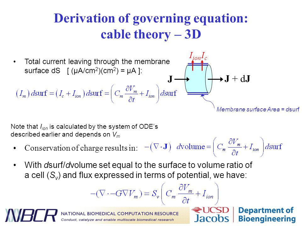 Derivation of governing equation: cable theory – 3D Total current leaving through the membrane surface dS [ (µA/cm 2 )(cm 2 ) = µA ]: Note that I ion is calculated by the system of ODE's described earlier and depends on V m Conservation of charge results in: J J + dJ IcIc I ion Membrane surface Area = dsurf With dsurf/dvolume set equal to the surface to volume ratio of a cell (S v ) and flux expressed in terms of potential, we have: