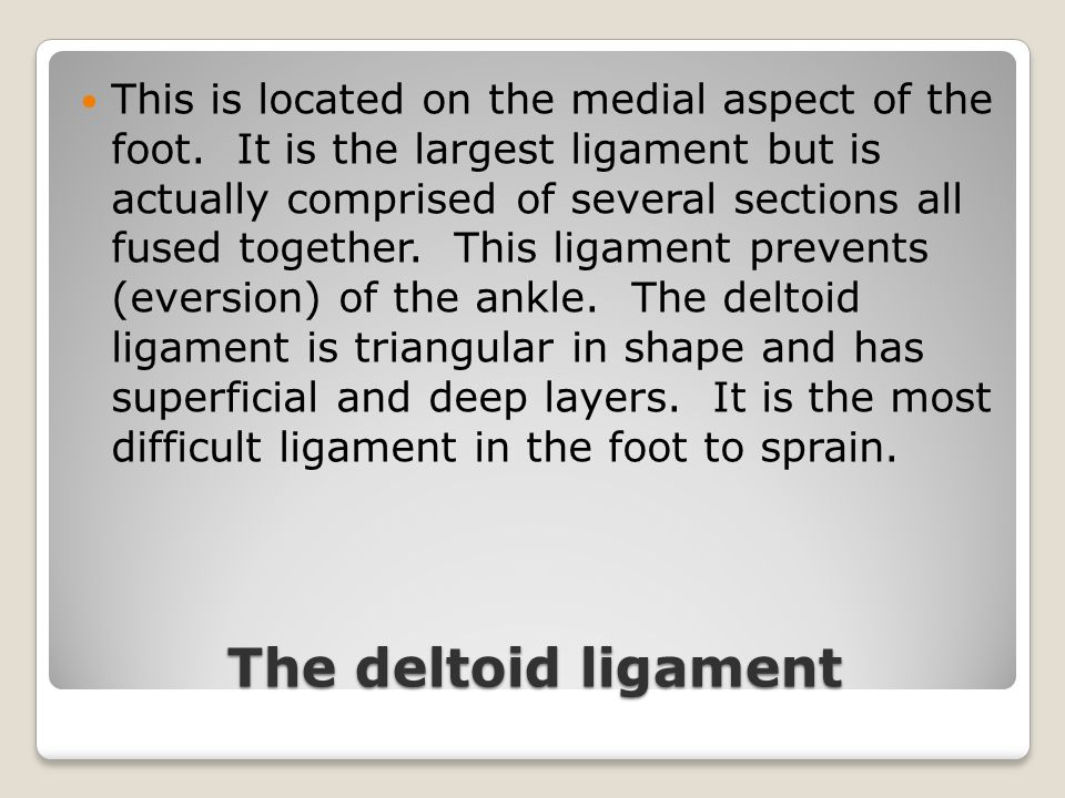 The deltoid ligament This is located on the medial aspect of the foot. It is the largest ligament but is actually comprised of several sections all fu