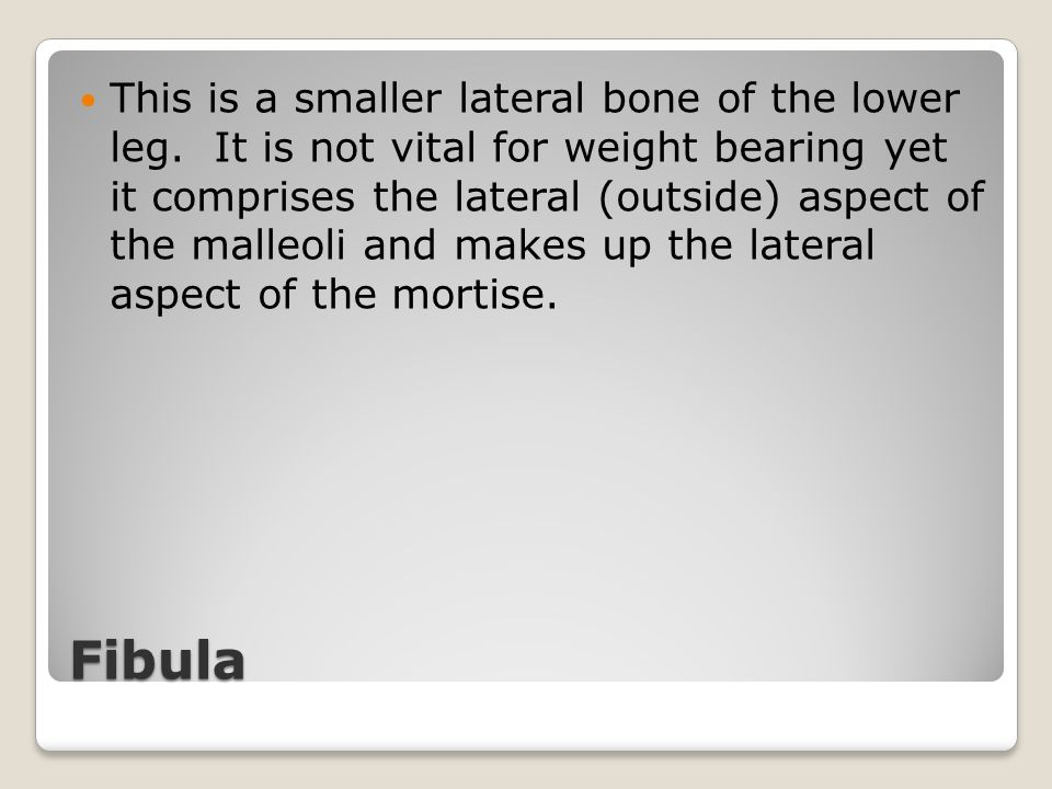 Fibula This is a smaller lateral bone of the lower leg. It is not vital for weight bearing yet it comprises the lateral (outside) aspect of the malleo