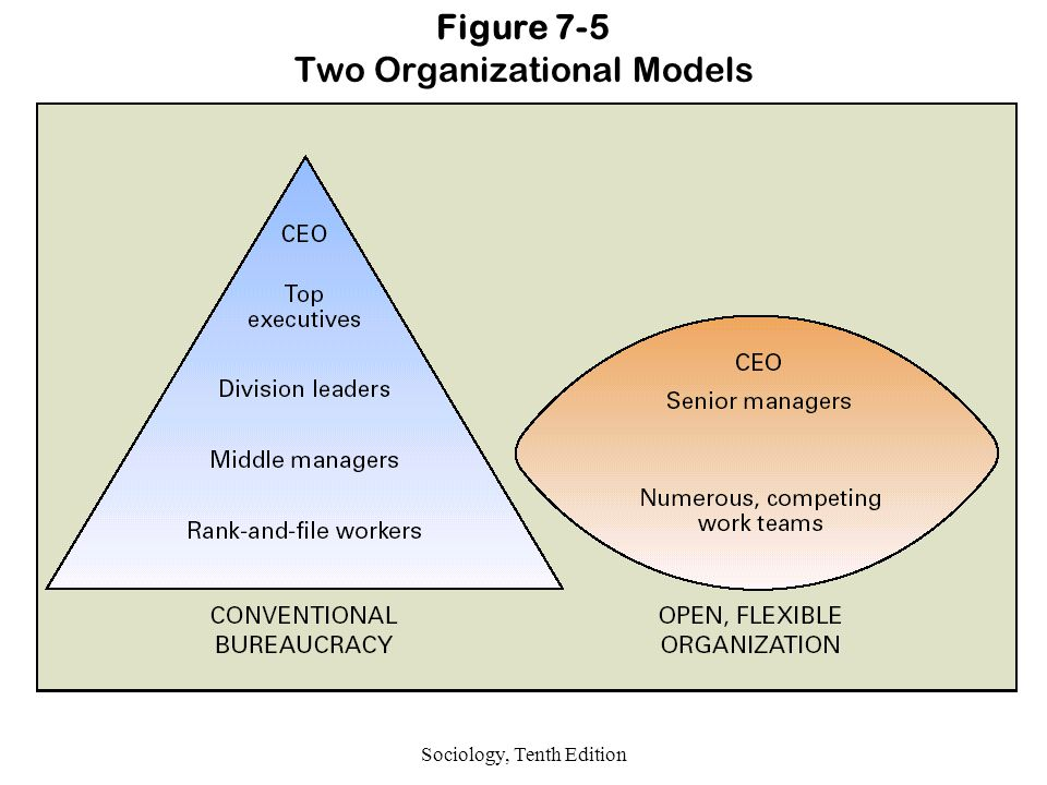 Sociology, Tenth Edition Figure 7-5 Two Organizational Models