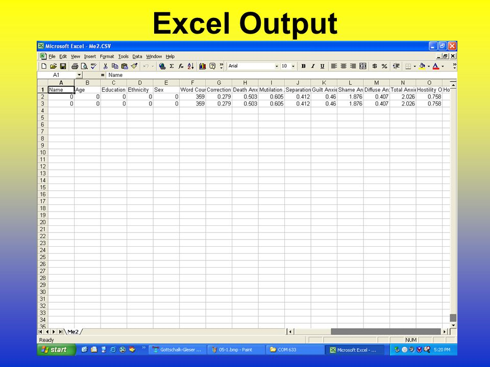 Excel Output