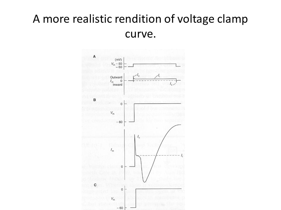 A more realistic rendition of voltage clamp curve.