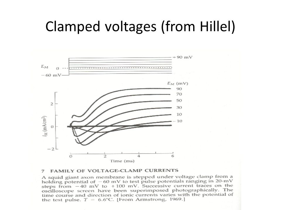 Clamped voltages (from Hillel)
