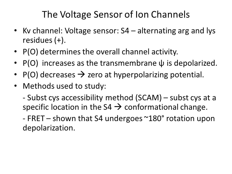 The Voltage Sensor of Ion Channels Kv channel: Voltage sensor: S4 – alternating arg and lys residues (+). P(O) determines the overall channel activity