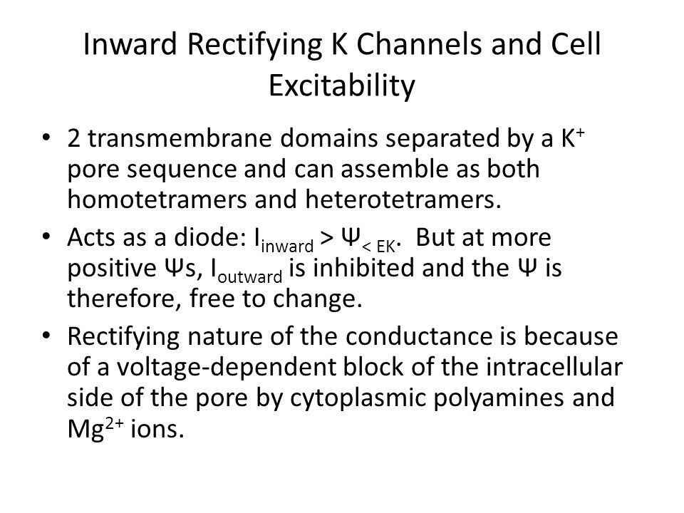 Inward Rectifying K Channels and Cell Excitability 2 transmembrane domains separated by a K + pore sequence and can assemble as both homotetramers and