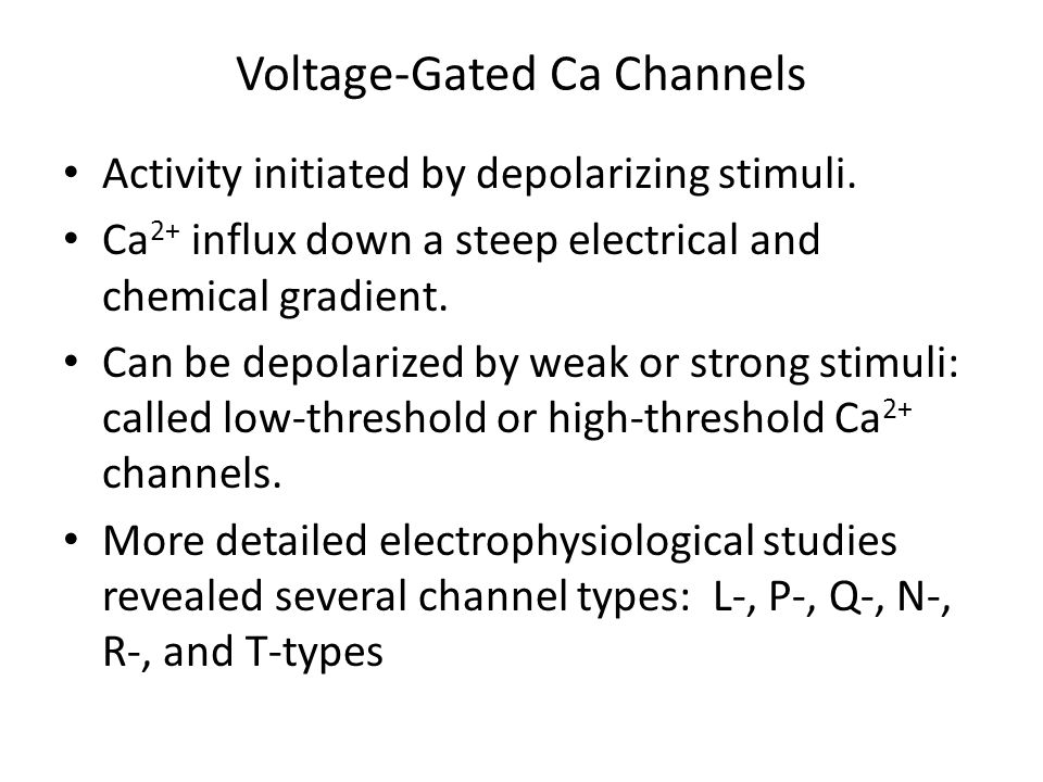 Voltage-Gated Ca Channels Activity initiated by depolarizing stimuli. Ca 2+ influx down a steep electrical and chemical gradient. Can be depolarized b